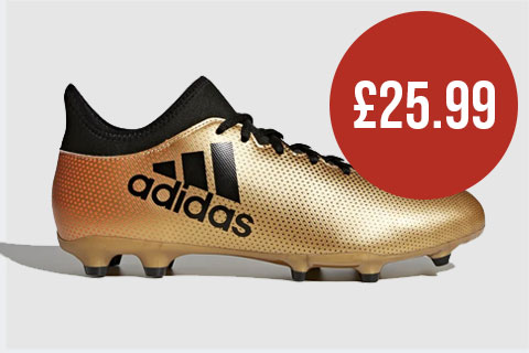 adidas X 17.3 Firm Ground Boots